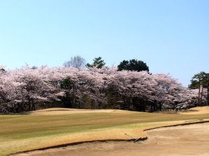 Golf_apr13_04